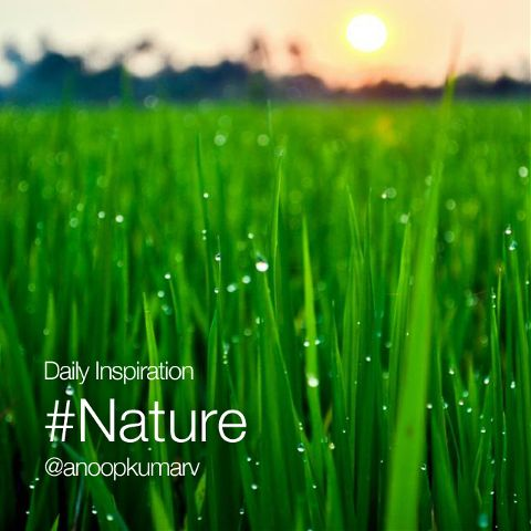 Nature photography daily inspiration