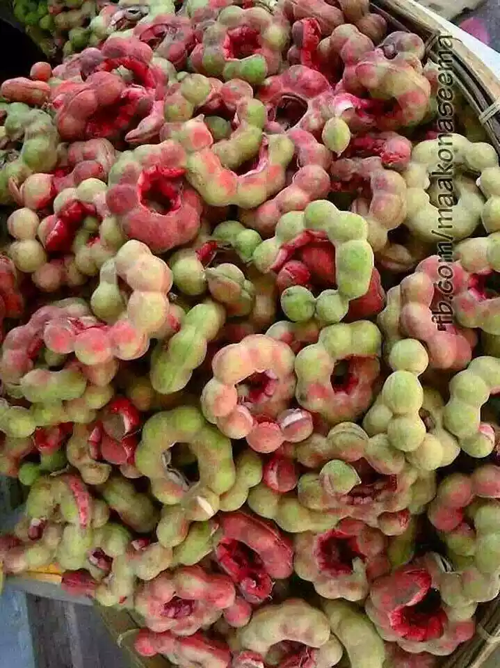 Jalebi Fruits In Bihar Image By Rahul Sahu