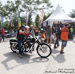 photography motorcycle harleydavidson