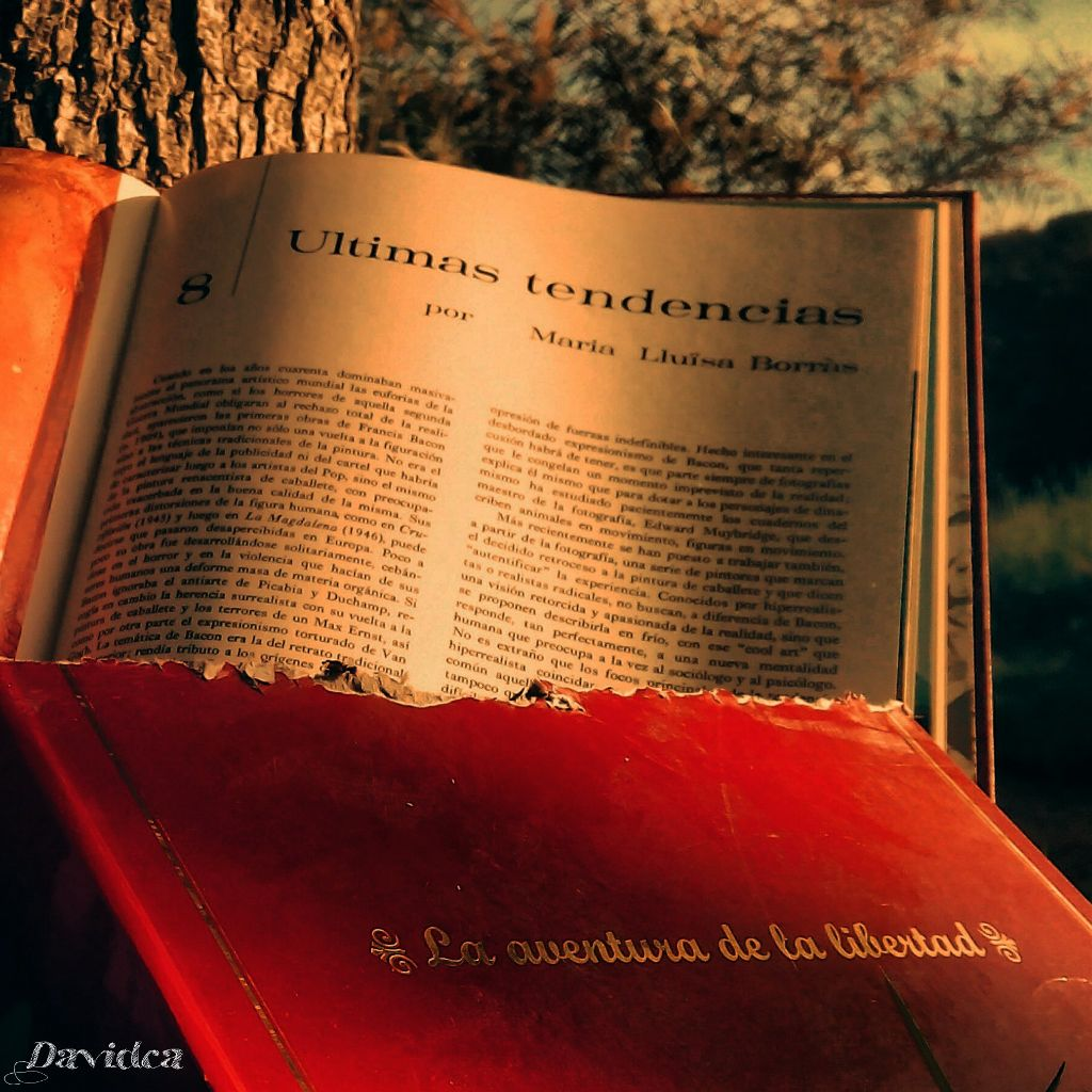 ✔La aventura de la libertad✔ #Pic#Davidca#photography #books #adventure