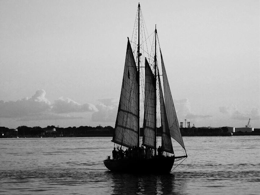 #blackandwhite  #sailing  #boats  #ocean  #summer