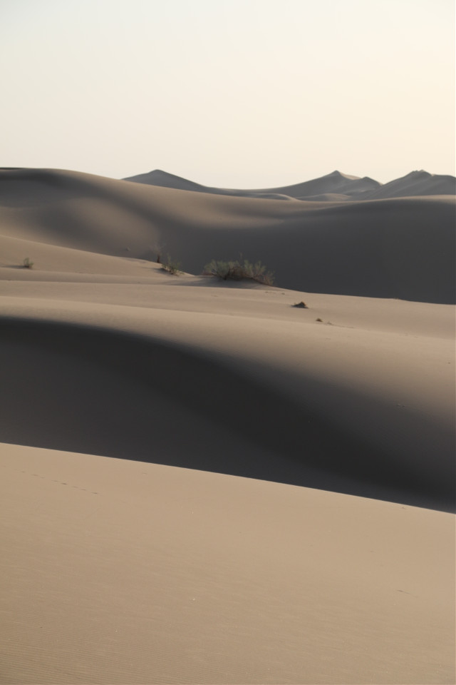 #photography #nature #desert #sahara #trance   She's the worse thing...!