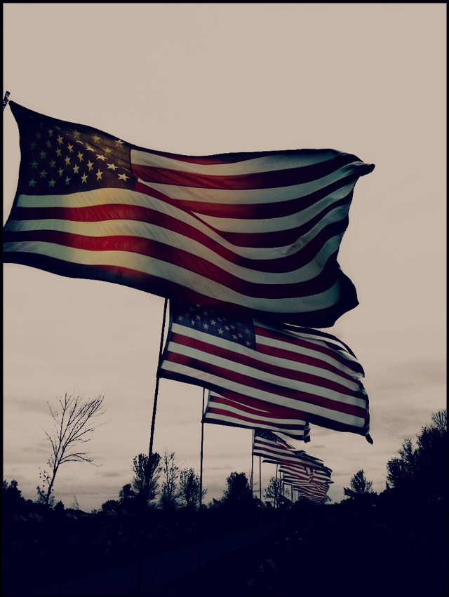 repost & reedit for repeating tag!! Hope everyone is having a great week!! 😊💜  #repeating  #interesting  #photography  #repeat  #flag