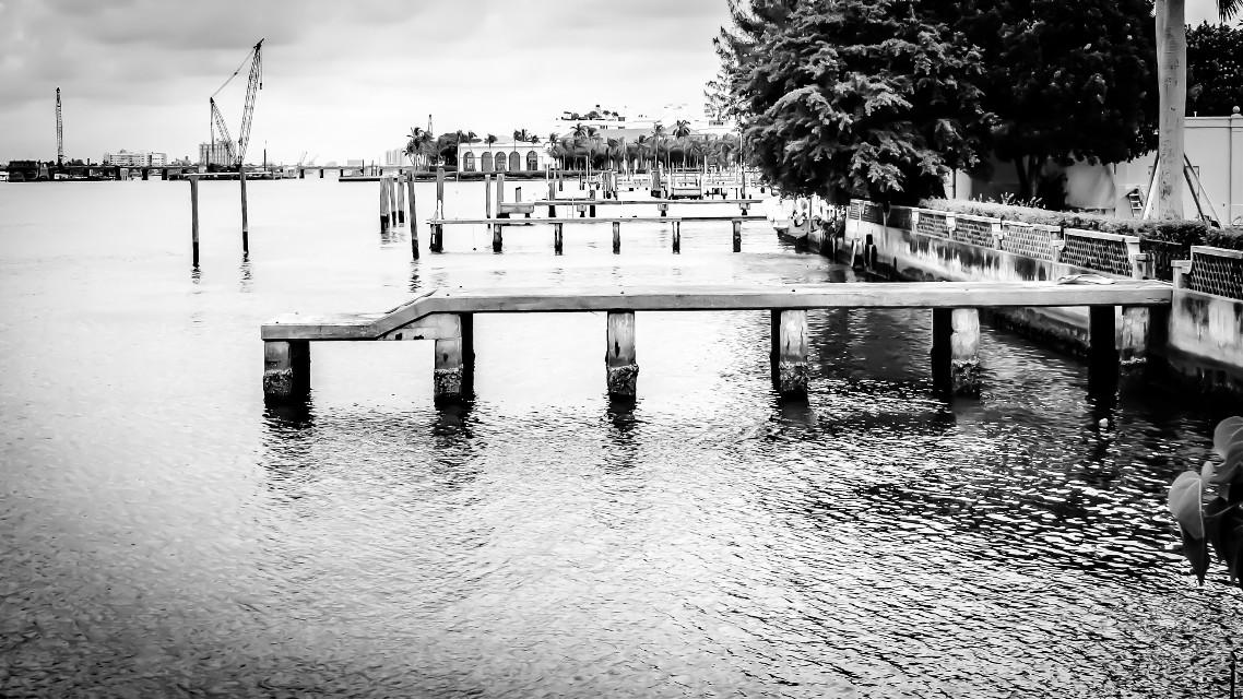 #bridge  #art  #interesting  #nature  #photography  #water