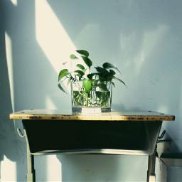 classroom refreshing crisp shadow dailylife